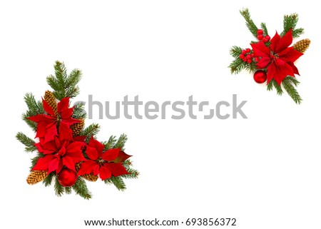 Christmas poinsettia flower background border holly stock for Poinsettia christmas tree frame