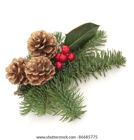 Christmas decoration of holly berry and blue spruce fir leaf sprigs with golden pine cones isolated over white background. - stock photo