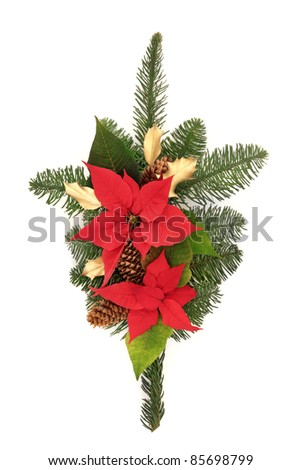 Christmas decoration of poinsettia flower heads, golden holly, pine cones and blue spruce leaf sprig isolated over white background. - stock photo