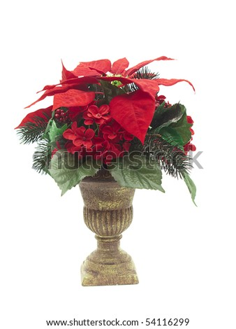 Christmas decorative flower arrangement in urn isolated on white - stock photo