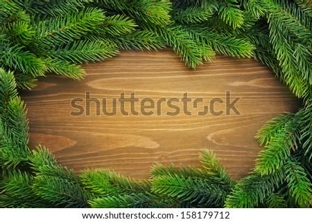 Christmas fir tree - stock photo