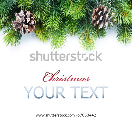 Christmas Fir Tree Border - stock photo