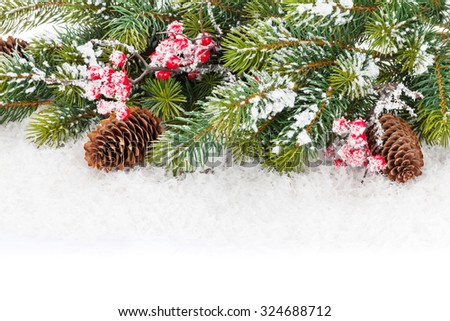 Christmas fir tree branch with holly berry and snow - stock photo