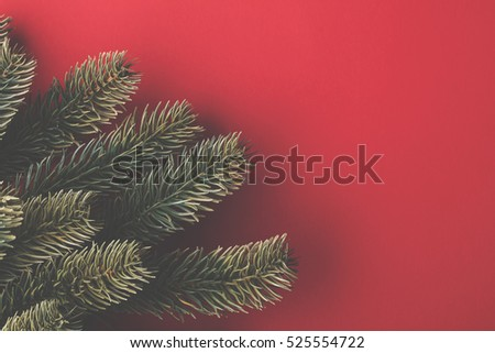 Christmas fir tree branches on a red background