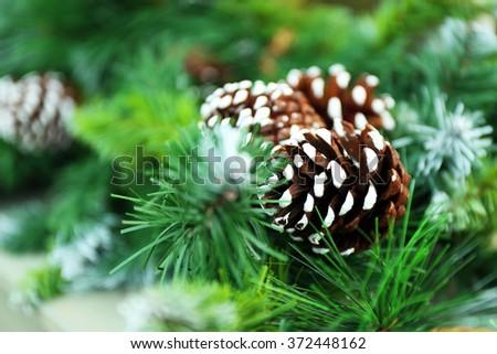 Christmas fir tree with cone closeup - stock photo