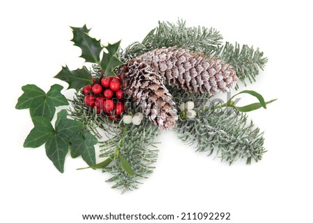 Christmas floral decoration with holly, ivy, pine cones, mistletoe and fir leaf sprigs over white background. - stock photo