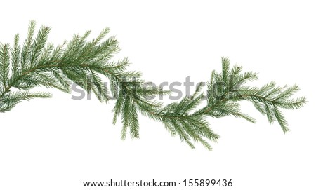 Christmas garland made from fir twigs on white background - stock photo