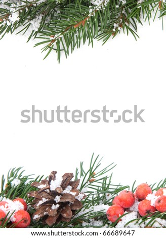 Christmas green  framework with snow  and holly berry  isolated on white background - stock photo