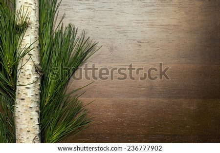 Christmas greenery and birch branch on wood background - left side  - stock photo