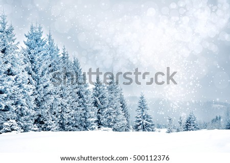 Christmas greetings background. Landscape with fir trees and snowflakes