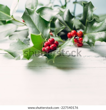 Christmas Holly - stock photo