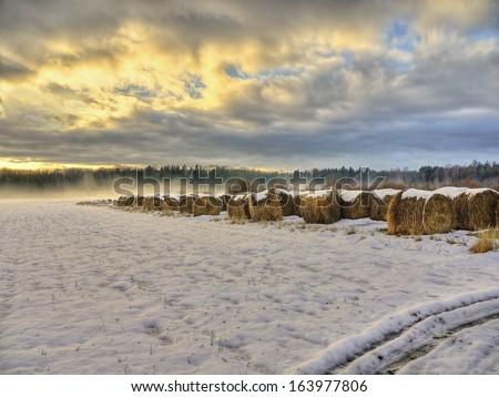 Christmas landscape - stock photo