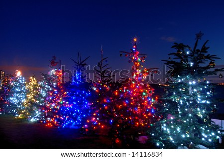 Christmas lights by Dundarave Beach at sunset, West Vancouver,Canada - stock photo