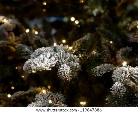 christmas lights hanging in a tree who is covered with snow - stock photo