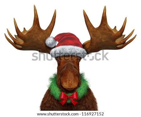 Christmas moose with Santa Clause hat with a holiday wreath and a red silk bow as a seasonal symbol of celebrating the time for giving with a festive funny northern forest animal with huge antlers. - stock photo