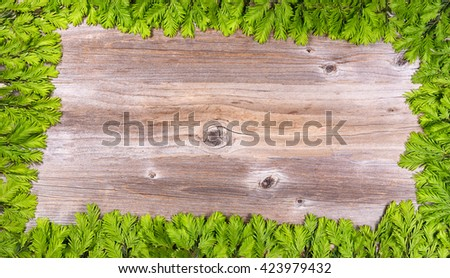 Christmas or New Year border decoration, complete border of frame, background with new fir tree branch tips on rustic wood. Plenty of copy space in center the tree branch rectangle border.