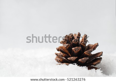 Christmas or Winter background. A Pine or Fir cone, shot at eye level,  partly buried in artificial white snow with copy space to left and above.