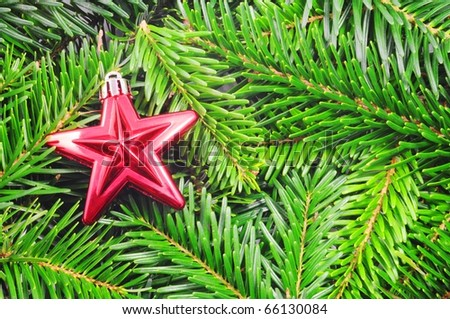 christmas or xmas still life with green fir from tree - stock photo