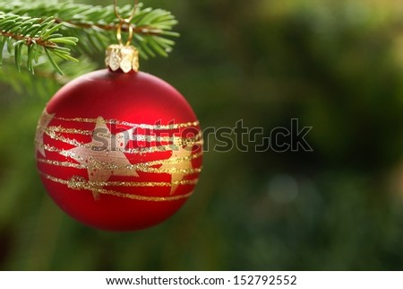 Christmas ornament hanging on a branch. Selective focus, shallow DOF, copy space. - stock photo