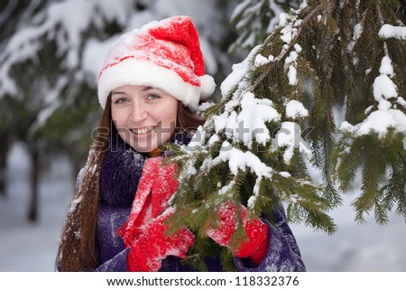Christmas  portrait of  woman in winter park - stock photo