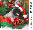 Christmas Pug Puppy in Hat - stock photo