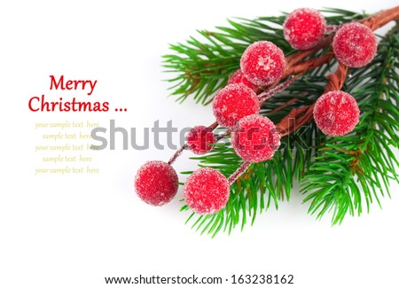 Christmas red berries with copy space, on  on white background - stock photo