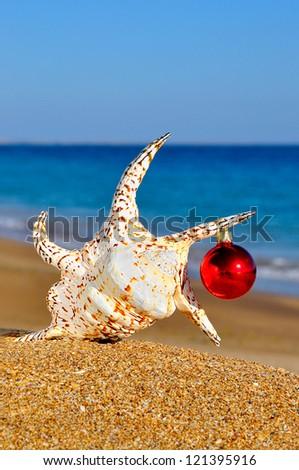 Christmas seashell on the sandy beach - stock photo