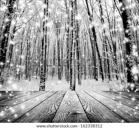 Christmas snow on the wood textured backgrounds. forest winter backgrounds - stock photo