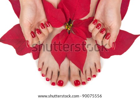 Christmas spa with manicured hands and pedicured feet - stock photo