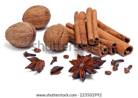 Christmas spices (cinnamon sticks, star anise, clove, walnut ) - stock photo