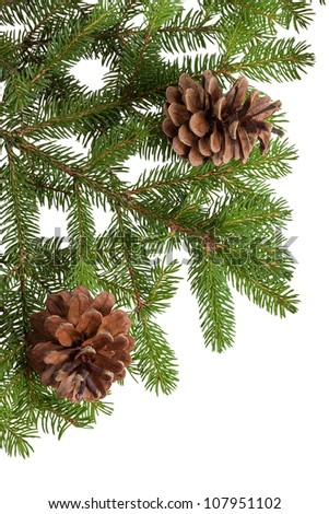 Christmas tree and cones, isolated