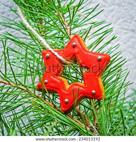 Christmas tree branch decorated with ginger bread star  - stock photo