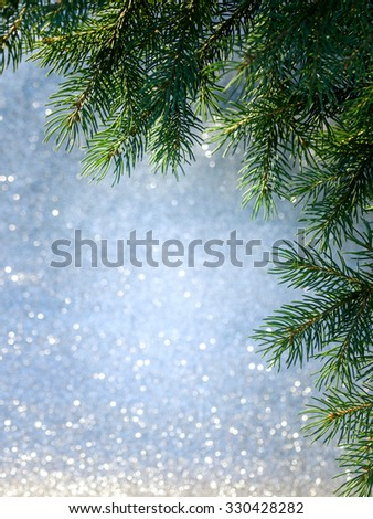 Christmas tree branch on a festive blurred background. Space for text.