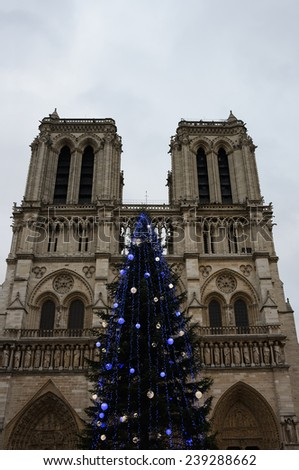 Christmas tree in front of the Notre Dame cathedral in cloudy day. Paris, France.
