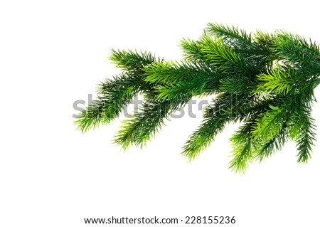 Christmas tree isolated on the white background - stock photo