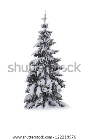 Christmas Tree - Isolated on white background - stock photo