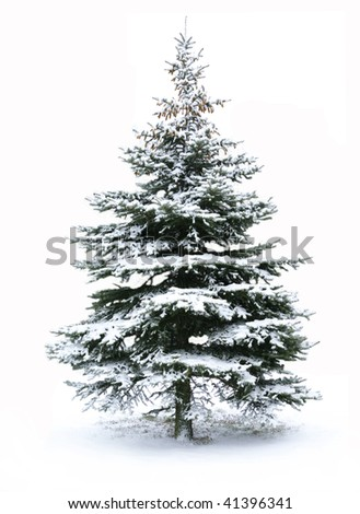 Christmas Tree - Isolated over White background - stock photo