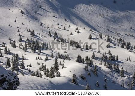 Christmas tree on a ski slope - stock photo