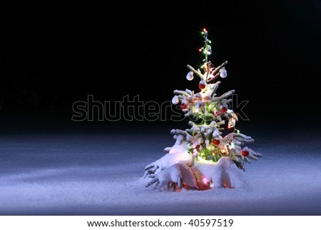 christmas tree on night background, christmas tree with colored lights