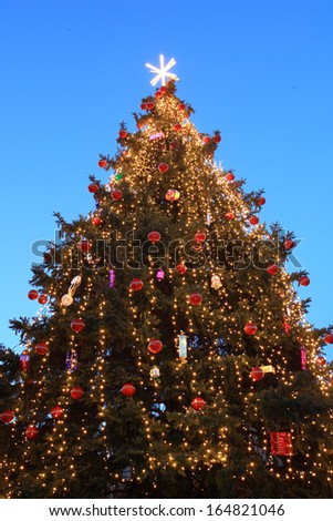 Christmas tree outdoor at blue sky - stock photo