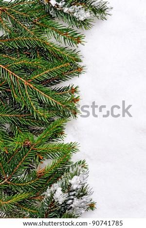 Christmas Tree over Snow. - stock photo