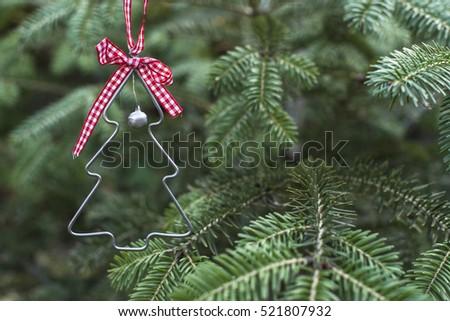 christmas tree shape on real pine tree christmas tree miniature shape on branch - Real Mini Christmas Tree