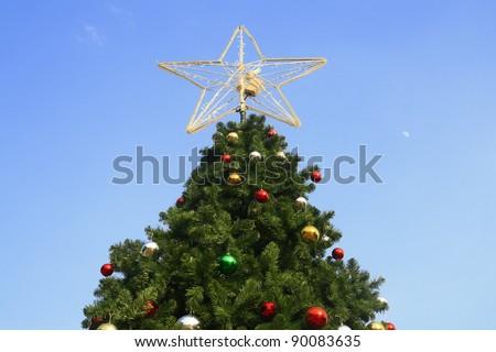 Christmas tree , Sydney, Australia - stock photo