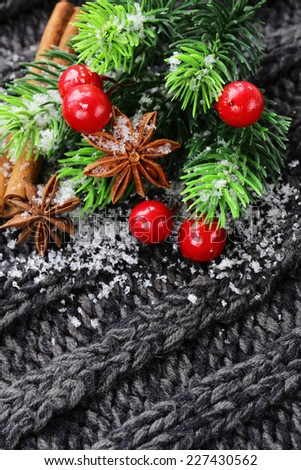 Christmas warm knitted background with fir tree and spices anise, cinnamon - stock photo