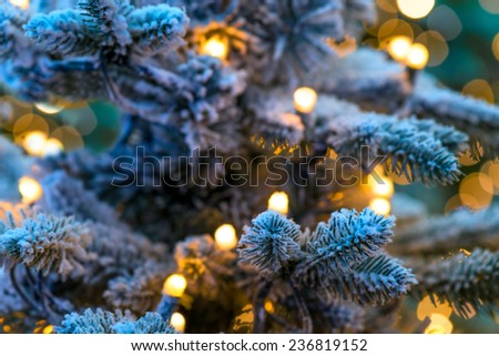 Christmas winter green tree close-up and the snow - stock photo
