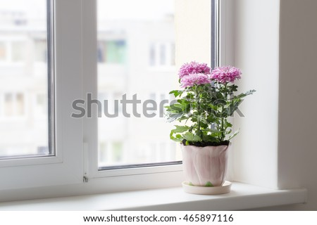 Window Sill Stock Images, Royalty-Free Images & Vectors | Shutterstock