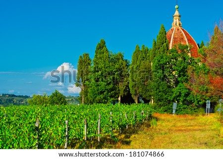 Church and Vineyard in the Chianti Region - stock photo