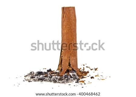 Cigar with ash isolated on a white background - stock photo