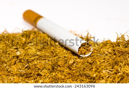 Cigarettes and tobacco on white background  - stock photo