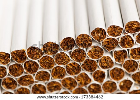 cigarettes production line with copy-space